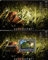 .: 1st Linux Desktop :. by Theconso
