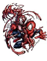 spiderman vs carnage by LOLONGX