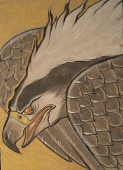 traditional eagle by missmonster