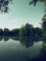 Dark pond 3 by FrantisekSpurny