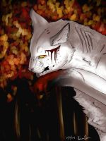 Blackstar: 100 Warrior Cat Challenge by KeraJoan
