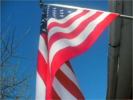 U.S. Flag by EtherealGothica