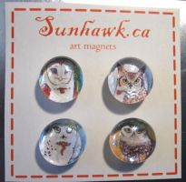 The Messengers - Owl Magnets by sunhawk