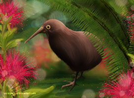 Kiwi bird by UszatyArbuz