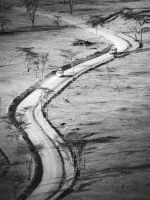 Road in Kenya by AlCorp