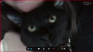Screen Shot of my cat's face XD by Siren1