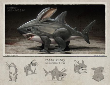 Shark Bunny by NateHallinanArt