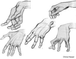 Life Drawing - hands by chrissi-pumpkin