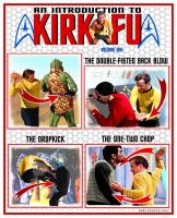 An Introduction to Kirk-Fu by Rabittooth