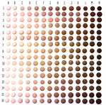 Skin Tone Swatches by Lizalot