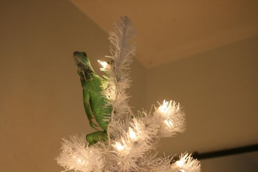 Deck the halls with lizzards by theverybadman