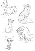 Dogs Dogs Dogs by animator