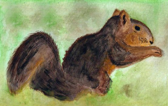 Watercolor Squirrel by MorikoRaion