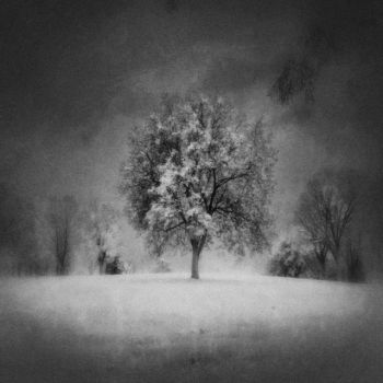 Gray And Visceral by intao