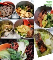 Vegan Personal Meals Share 55 by Doll1988
