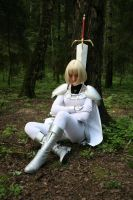 Sleeping Claymore by MollyMetaphora