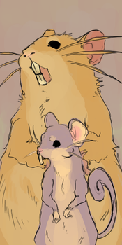 rattata and raticate by pokiesman