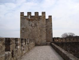 Castle Top 04 by Lusitana-Stock