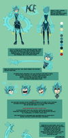 Ace Ref sheet by TheEndlessBlackAbyss