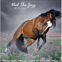 HEE Horse Avatar- Veil The Jazz by Prince-Studios