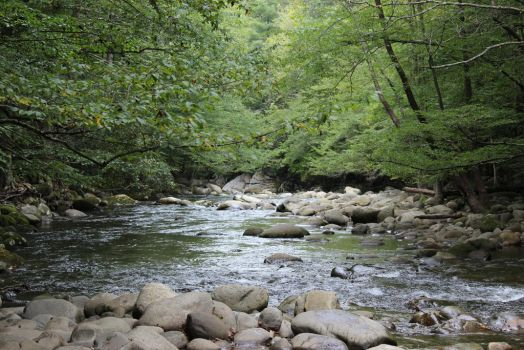 Tennessee stream by old74