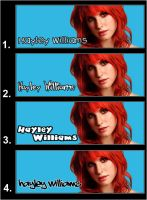 Hayley Williams Banner by argantes
