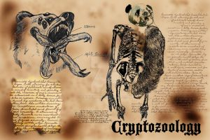 Cryptozoology by cainew