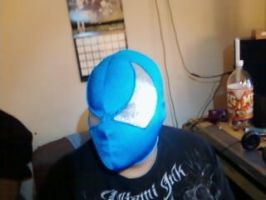 Bloody Beetroots mask04 by hhairball9