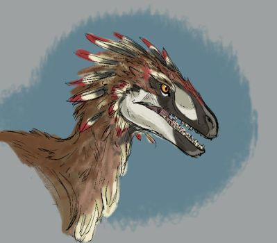 Utahraptor Study by Clairictures