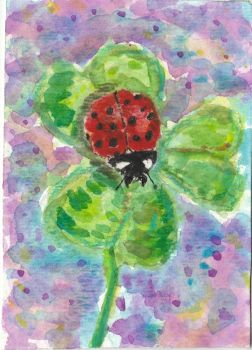 Ladybug on a 3 leaf clover  watercolor aceo by tulipteardrops