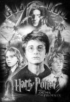 Harry Potter 5 by angrywhitewanker
