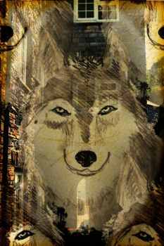 Wolf Alley by crowqueenuk
