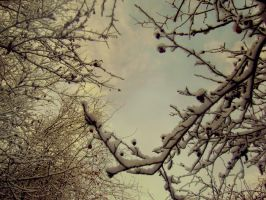 My December by Autopsyh