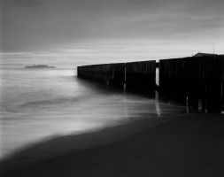 Crissy Fence by Wilton-Wong