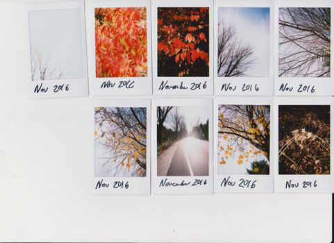 Instax03 by starsinmyteacup