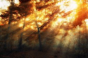 wash my tears away... by ildiko-neer
