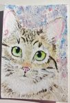 Tabby  cat  watercolor  original painting by tulipteardrops