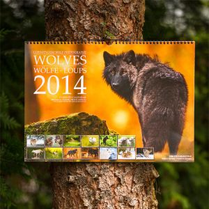 Wolves 2014 Calendar - Lookin' good on the tree! by Lupinicious