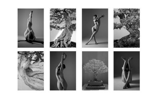 The Body and the Tree by AydenGracePhoto