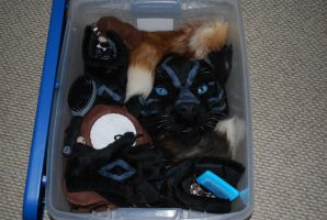 All Packed for DragonCon 2011 by Water-Ferret