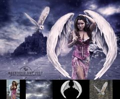Angel by Recendiz