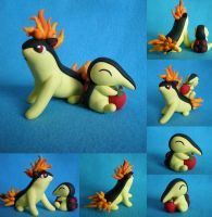 Commission: Cyndaquil::Quilava