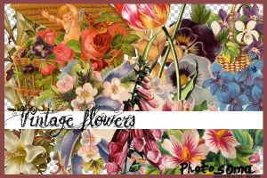 Vintage flowers by photosoma