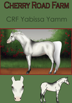 CRF Yabissa Yamm**** by Ready-Or-Not