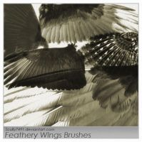 Feathery Wings Brushes by Scully7491