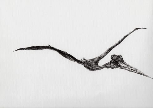 2015-11  Pterodactyle by crayon2papier
