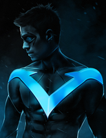 Nightwing by ehnony