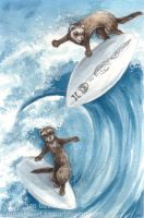 Surfing Ferrets by Pannya