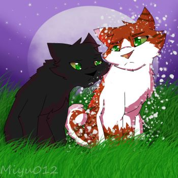 Hollyleaf x Fallen Leaves by Miyu012