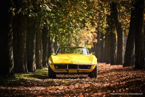 Yellow C3 by AmericanMuscle